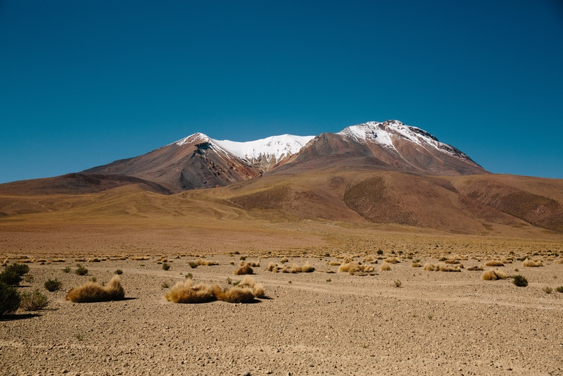 A snowy mountain in San Pedro de Atacama, Chile with tumbleweeds on the desert-like plains in the foreground